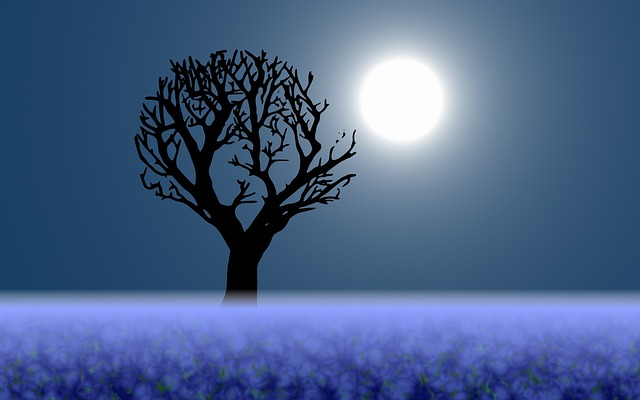 Create Long Lasting Abundance with The Full Blue Flower Moon This May